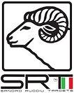 SRT Target Logo.jpg