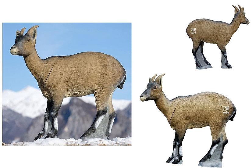 IBERIAN WILD GOAT (female) - GROUP 2 - L100cm H94cm