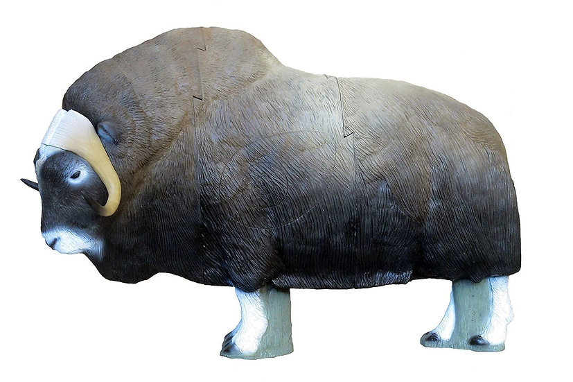 MUSK OX - GROUP 1 - L180cm H127cm