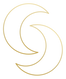 Luna_Social_Icon_Moon_Gold.png