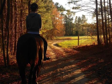 Girl on Trail.jpg