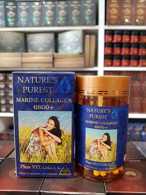 Nature's Purest Marine Collagen 6800+ 100s GMP Health Australia
