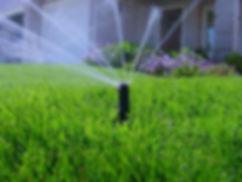 lawn irrigation_edited_edited.jpg