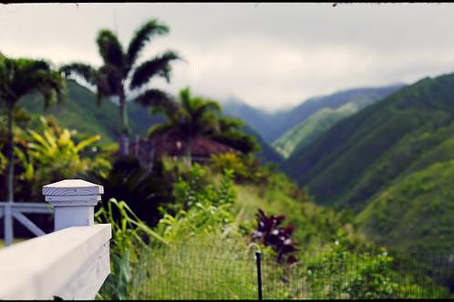 Maui LUT set