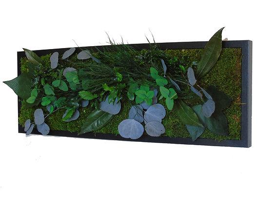 Tableau eucalyptus 60 x 20 PRO