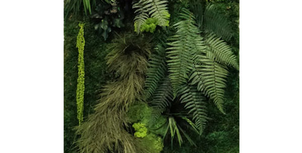 Kit mur végétal jungle