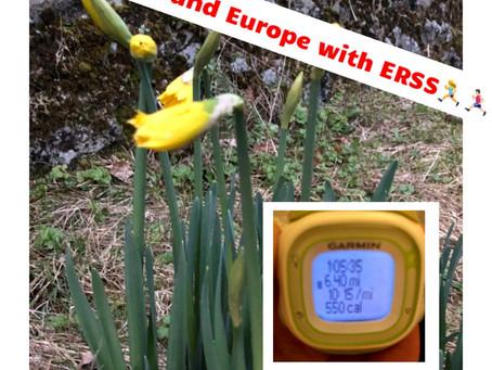 Day 2 - ERSS around Europe Walking challenge