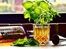 Mexican Tea