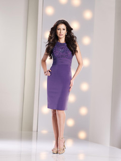 NEW Social Occasions Style: 213889