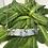 Thumbnail: Aquamarine Necklace