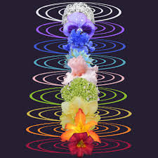 Meeting your Chakras - 9 weeks