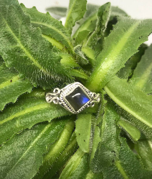 Sweet detailed Labradorite ring