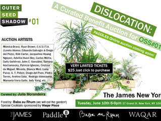 Dislocation: A Curated Benefit Auction for OSS#01