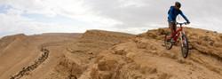 DESERT Daily TOUR