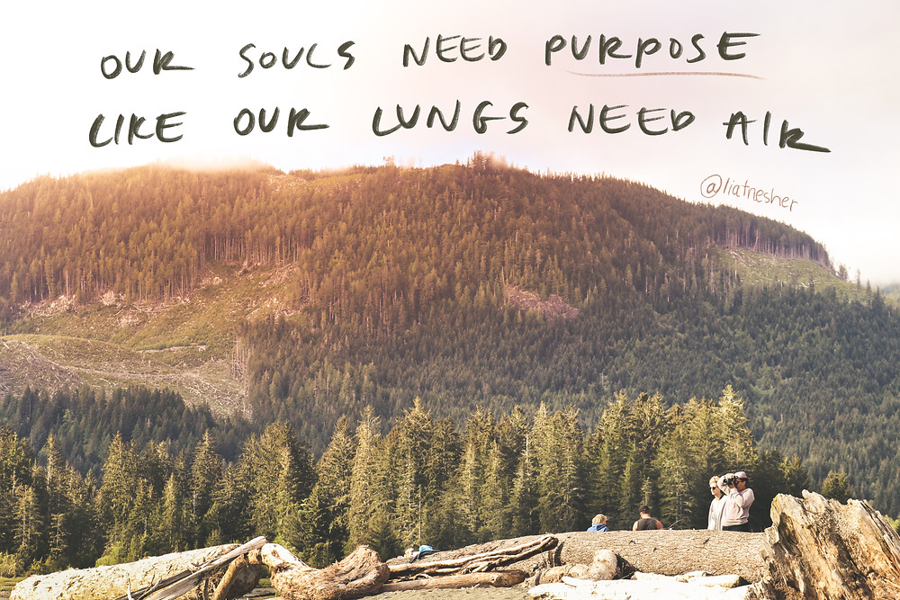our souls need purpose like our lungs need air
