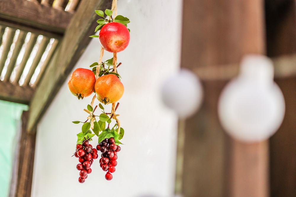 Fruit hanging in Sukkah