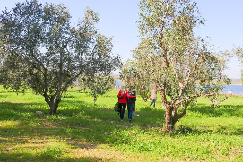 Women walking towards planting area at Garden of Life, Latroon, Israel.