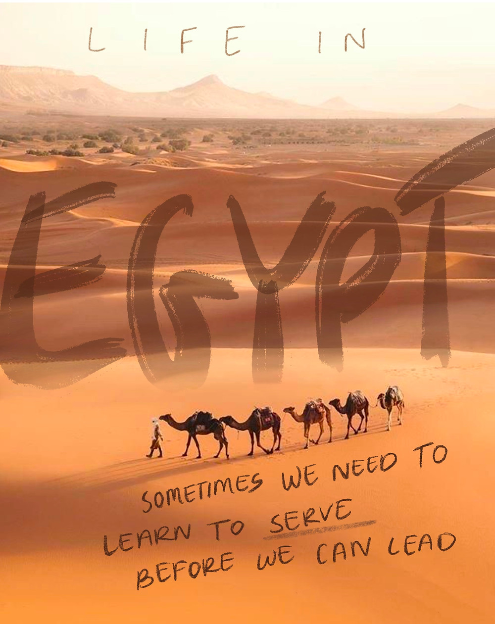 Sometimes we have to learn to serve before we can lead - Egypt camels