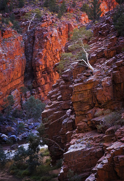 Red Gorge