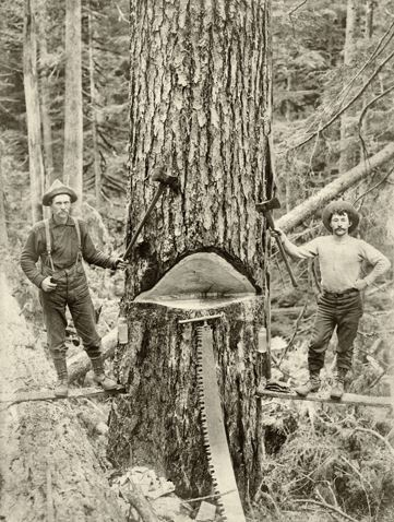 Old Oregon Loggers