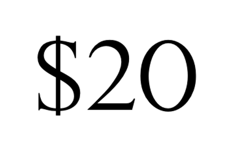 Payment of $20
