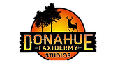 Donahue Taxidermy Studios; Greeneville; Tennessee; East Tennessee; Licensed Taxidermist; deer; bear; wolf; coyote; beaver; skunk; goose; geese; bird; turkey; bobcat; mountain lion; ram; duck; european mount; tanning; rugs; antlers; rams; elk; moose; bull; hog; pig