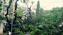 """Cyclone in Chennai """"Vardah"""""""