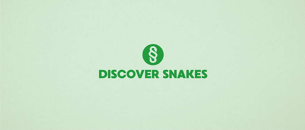 Snake Discovery.png