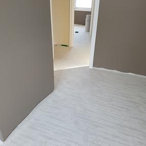 after paint & carpet