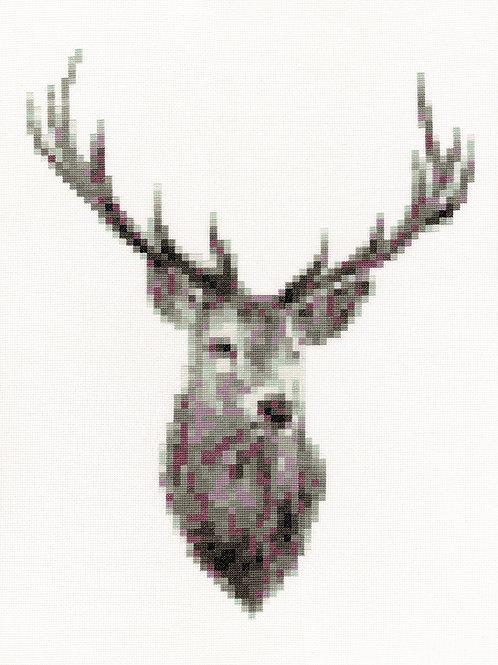 Blurred Monarch, Giclee Print