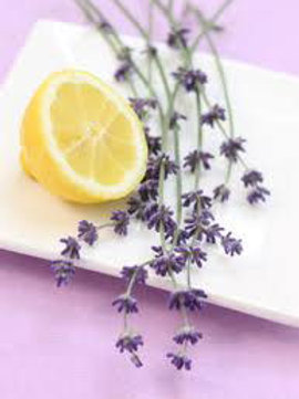 LEMON LAVENDER Essential Oil Candle (small)