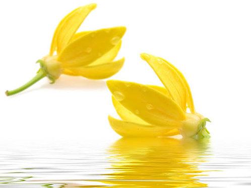 Ylang Ylang Fragrance Beeswax Melts