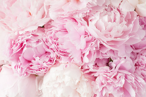 Pink Peony Fragrance Beeswax Melts