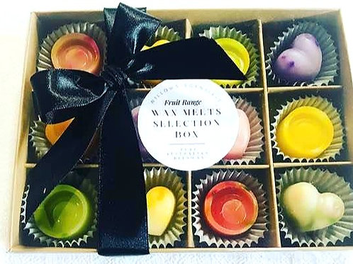 Fruit Range Wax Melts - The Melts Box Collection