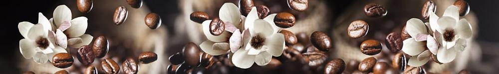 Темно-коричневое изображение с белыми цветами и зернами кофе