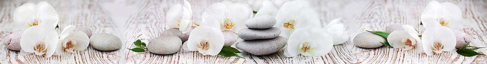 Изображение белые орхидеи, серые камни, панорама для панели из стекла