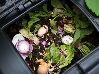 Save, Reuse & Compost