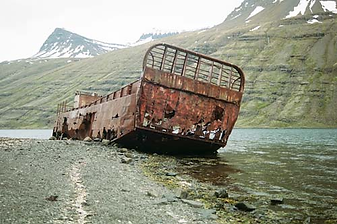 Iceland_Whaling-Container_500.png