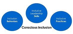 Conscious Inclusion.jpg