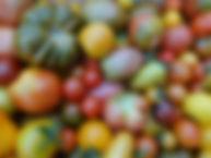 La Fermette bio de l'epte, Gisors, Eure, Producteur, Légume Bio, Gisors, Eure, légume, légume biologique, vente directe
