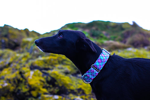 Ready Made 40mm EXPLORE Rope Collars