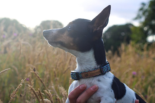 ECO MEADOW XS COLLAR