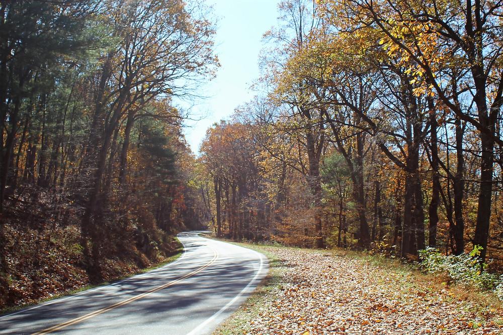 Skyline Drive del Shenandoah National Park en Virginia.
