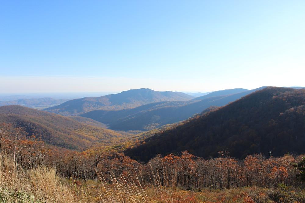 Otoño en las hermosas montañas de Luray en Virginia.