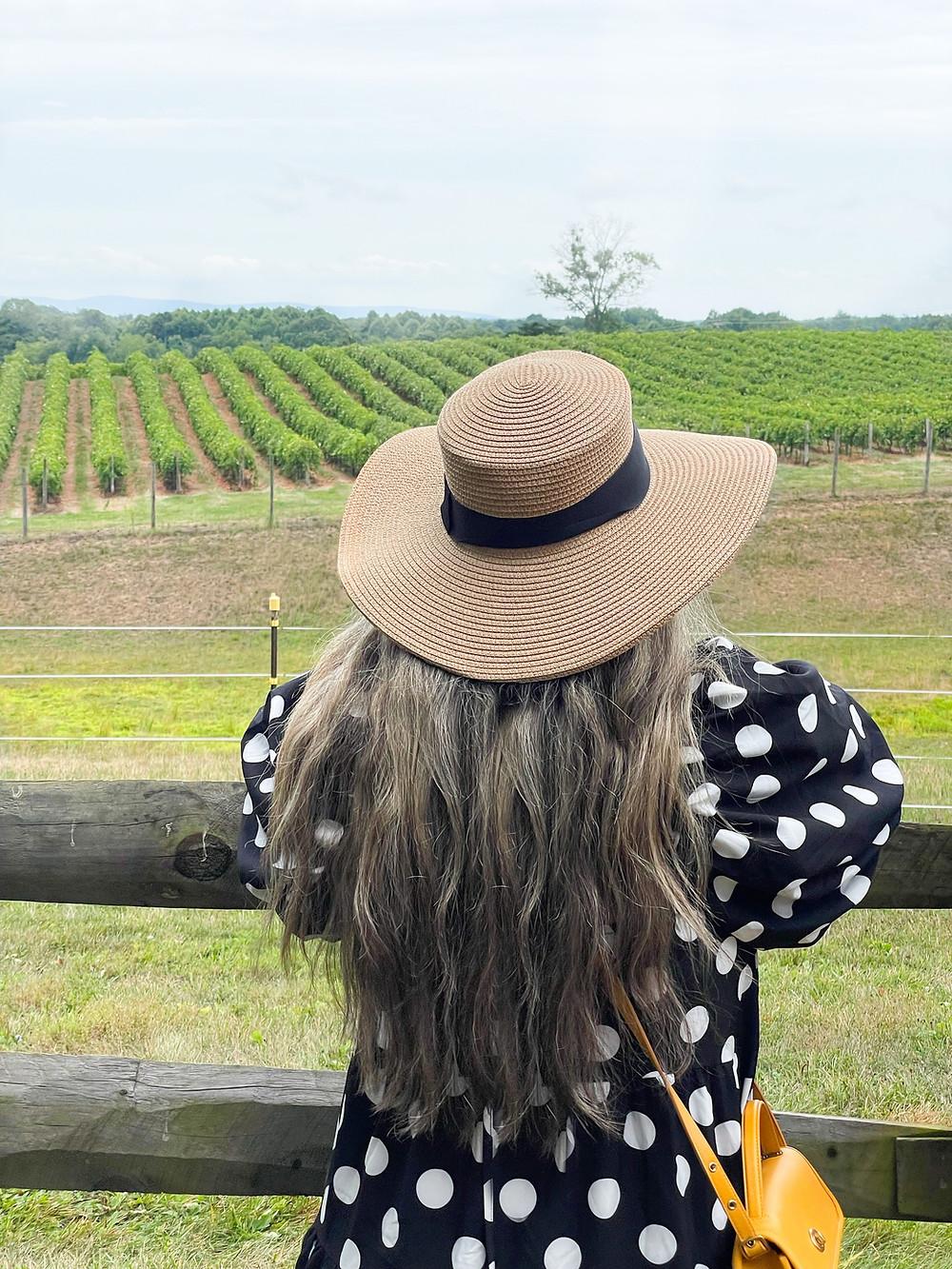 Viñedo The Winery at Bull Run en Virginia.