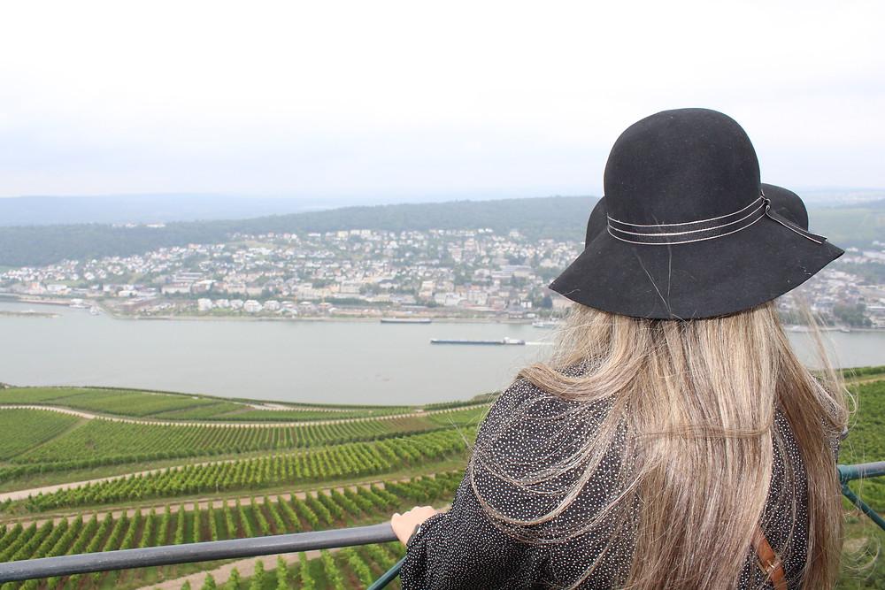 La vista desde el punto más alto de Rüdesheim.