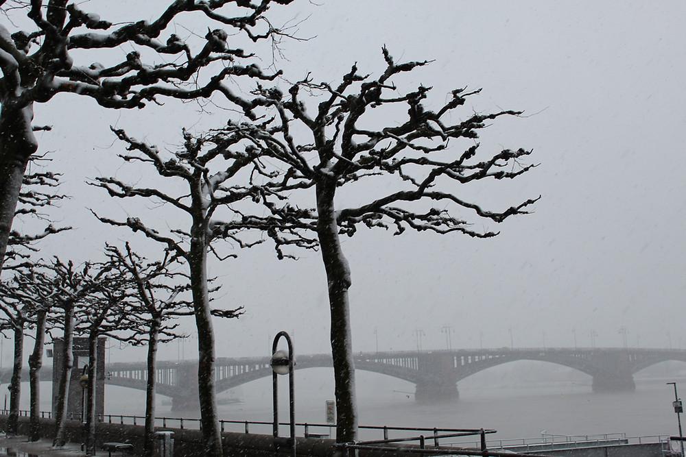 Invierno en la ciudad de Mainz.