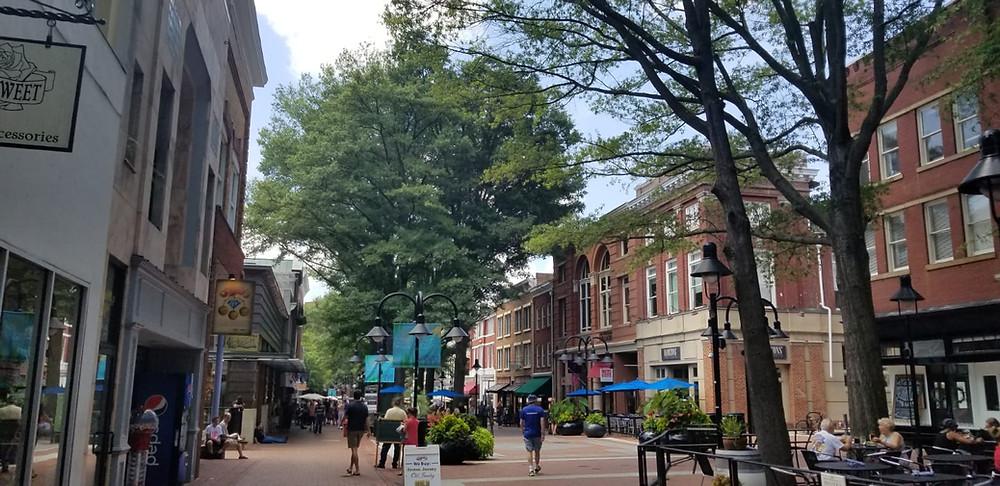 Explora a Charlottesville en Virginia.
