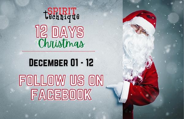 12 Days of Christmas_ November .png