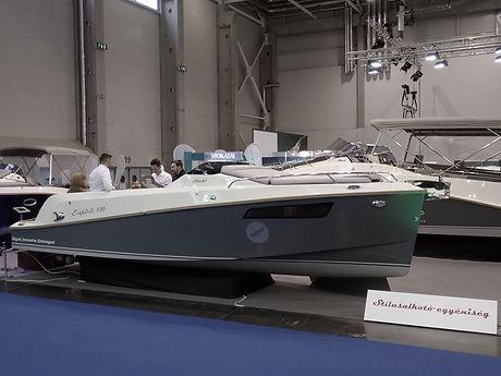 2020 - E-spirit BP Boatshowa.jpg